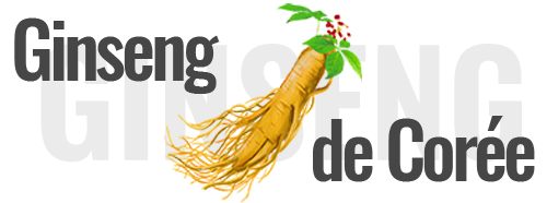 Ginseng de corée